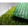 供应多利隆幼儿园人造草坪—油菜花