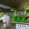 新型青蛙跳游乐设备生产厂家
