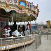 (二手) 8臂自控飞机,24座豪华转马,8臂桑巴气球,10台地网碰车,滑行龙,宽球车,乐巴车