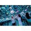 网红小屋系列水母世界